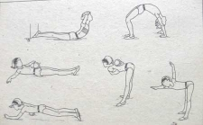 Упражнения для брюшного пресса и позвоночника